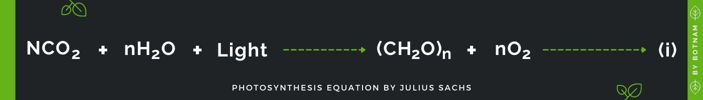 photosynthesis-equation-by-Julius-Sachs