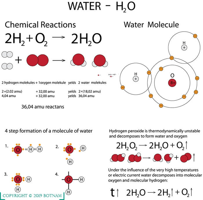 structure-of-water-molecule-and-properties-of-water