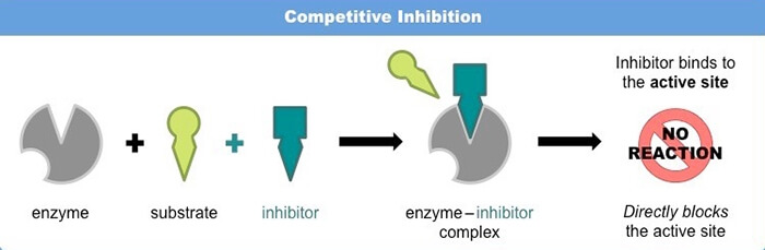 competitive-inhibition